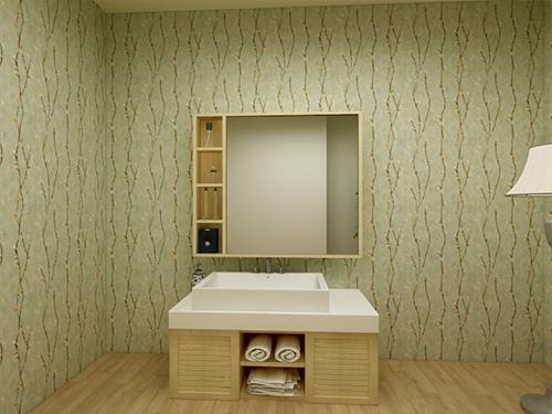 卫浴柜带多功能镜
